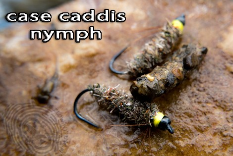 Case caddis nymph